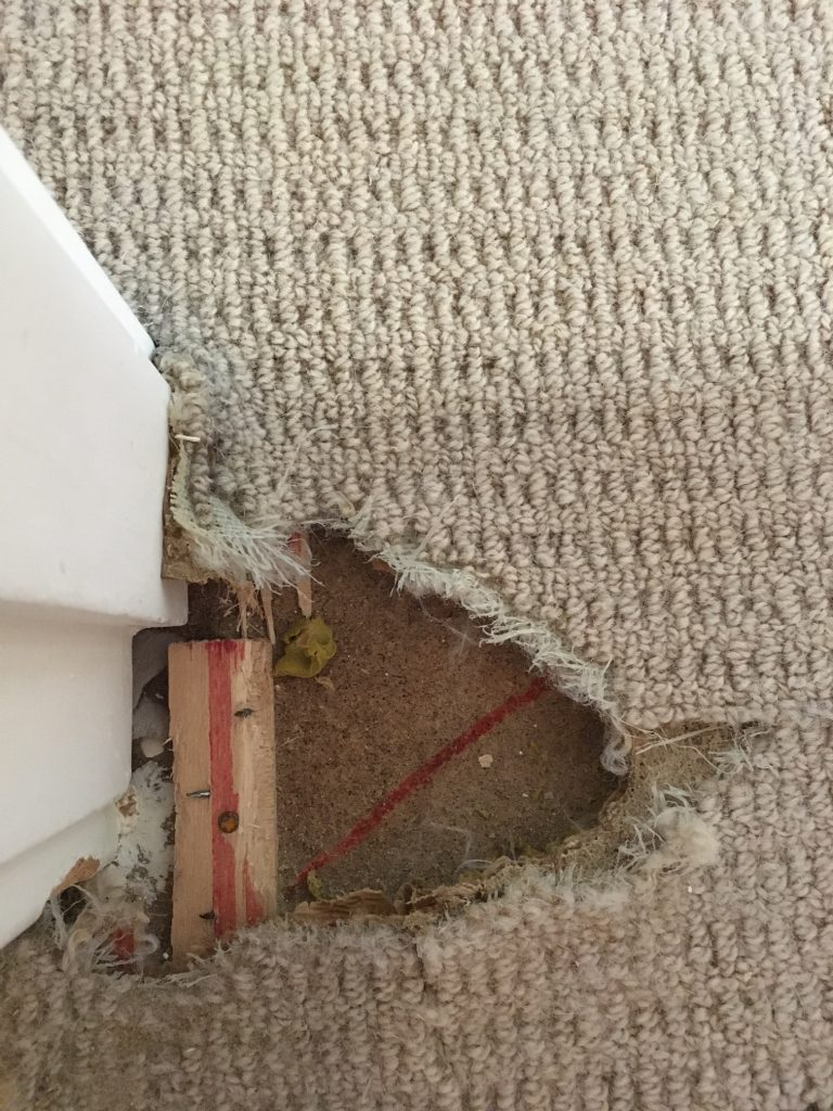 carpet_repair_before